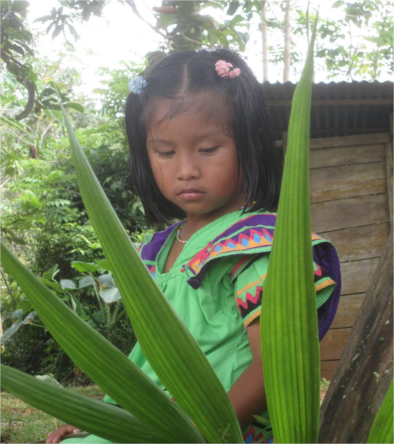 Entre tradition et modernité… Une étrangère sur les terres des Guaymis