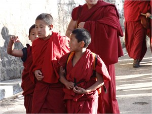 McLeod Ganj moines de face
