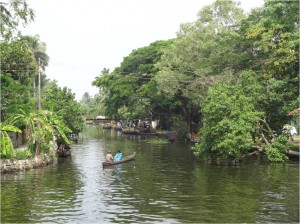 Inde Backwaters paysage bateau touristique