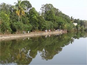 Inde Backwaters paysage bateau touristique1