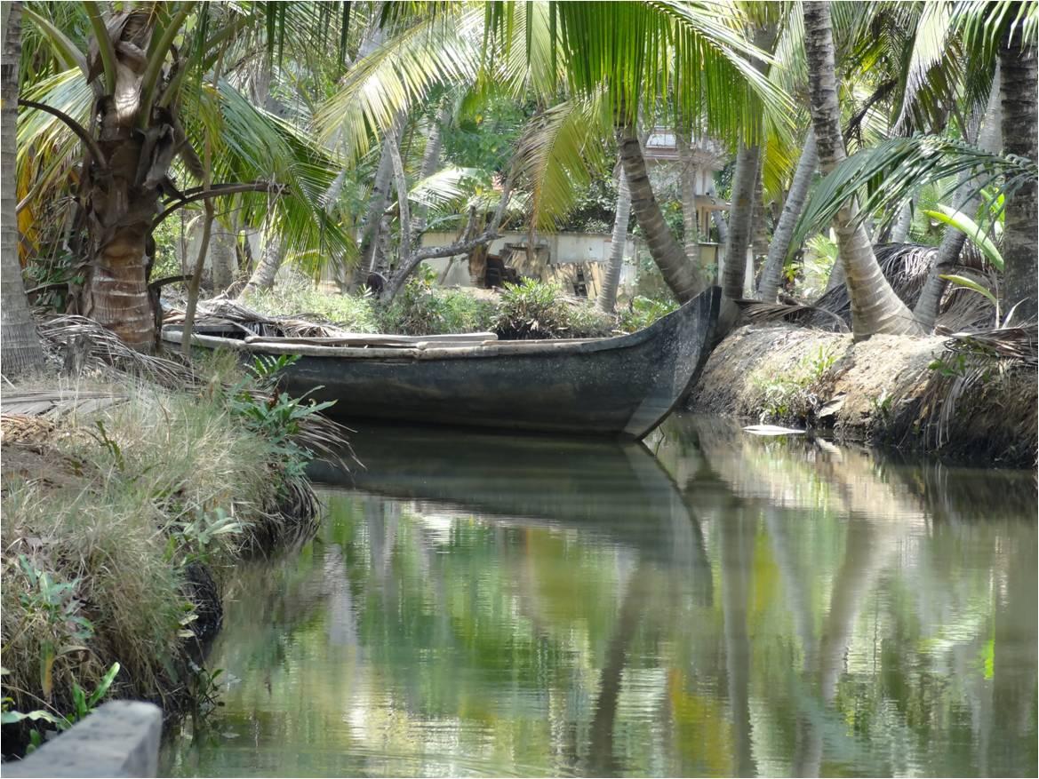 Quelle est la meilleure façon de visiter les Backwaters ?