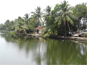 Inde Backwaters paysage houseboat ou bateau touristique2