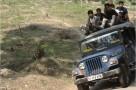Inde Darjeeling jeep1