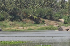 Inde Hampi Virupaksha