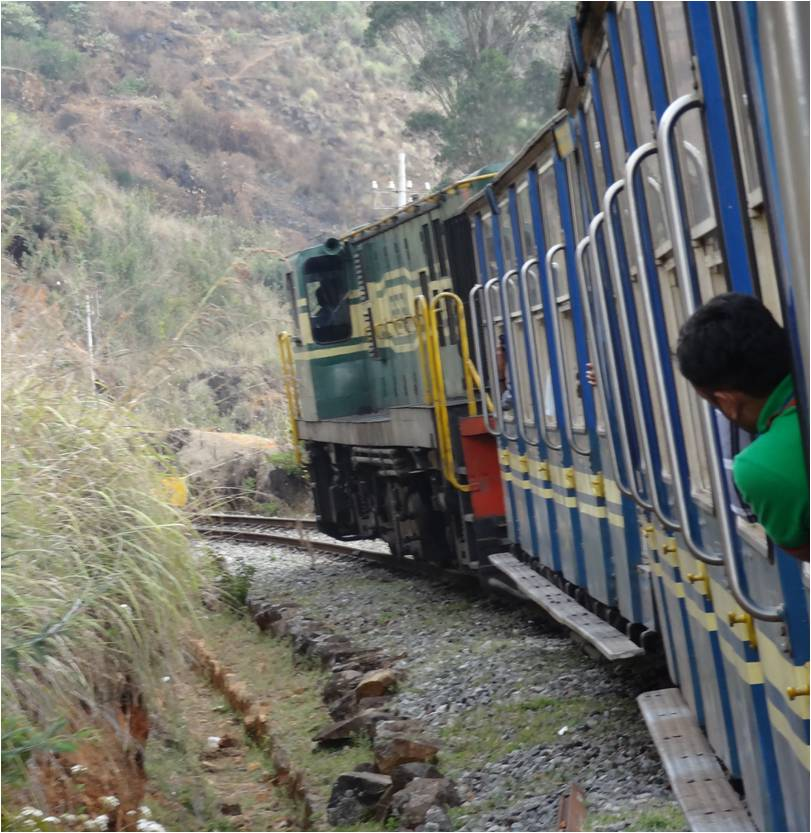 Inde Ooty train