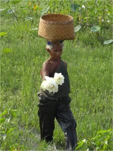 Inde Koraput femme lotus