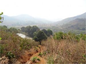 Inde Koraput paysage