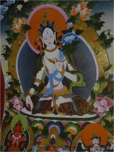 Népal Bakhtapur Thikha Tara blanche