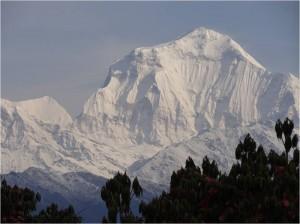 Népal Poon Hill montagnes 4