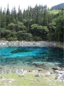 Bassin Multicolore