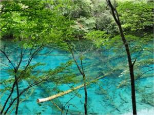 Chine Jiuzhaigou lac multicolore 1