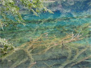 Chine Jiuzhaigou lac multicolore 5