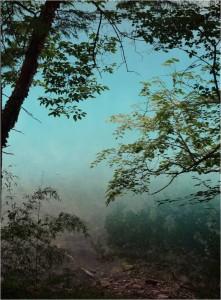 Chine Jiuzhaigou lac multicolore 6