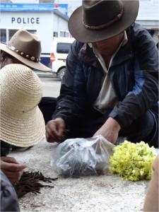 Chine Sichuan Litang homme