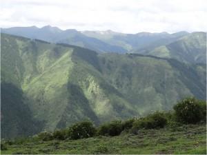 Chine Sichuan Songpan paysage