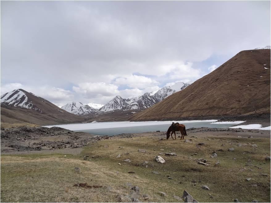 Kirghizistan Kol Ukok lac 1