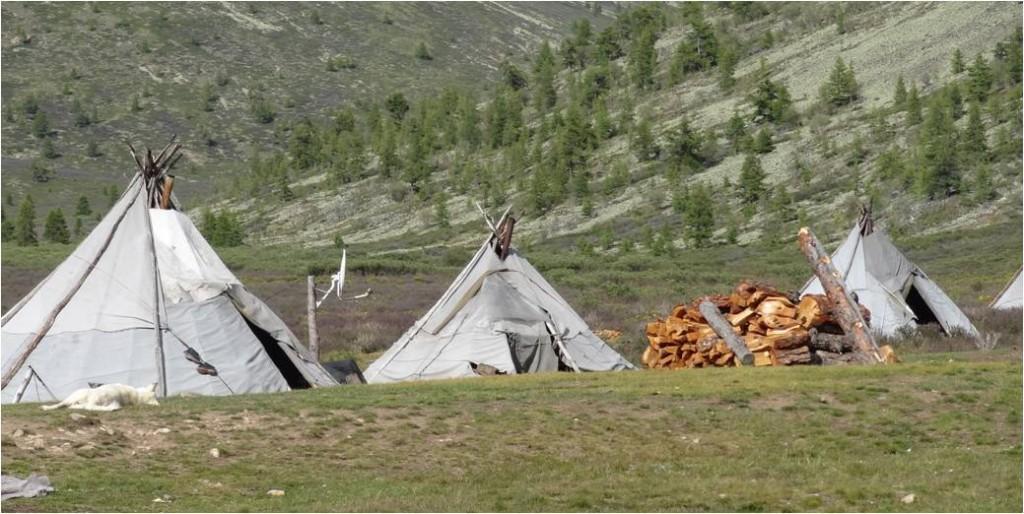 Mongolie Tsaatanes tipis
