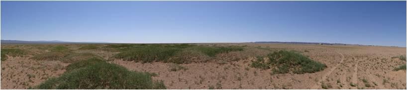Mongolie désert Gobi 1000 facettes 1