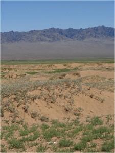 Mongolie désert Gobi 2