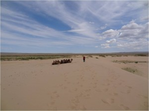 Mongolie désert Gobi Khongoryn Els dunes 3