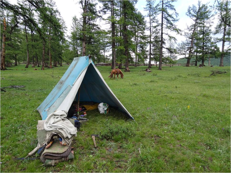 La quête des camps Tsaatanes