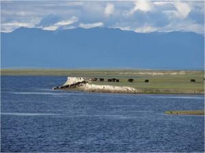 Mongolie trek cheval jour 4 4