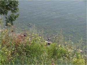 Russie lac Baïkal Circumbaïkal 2