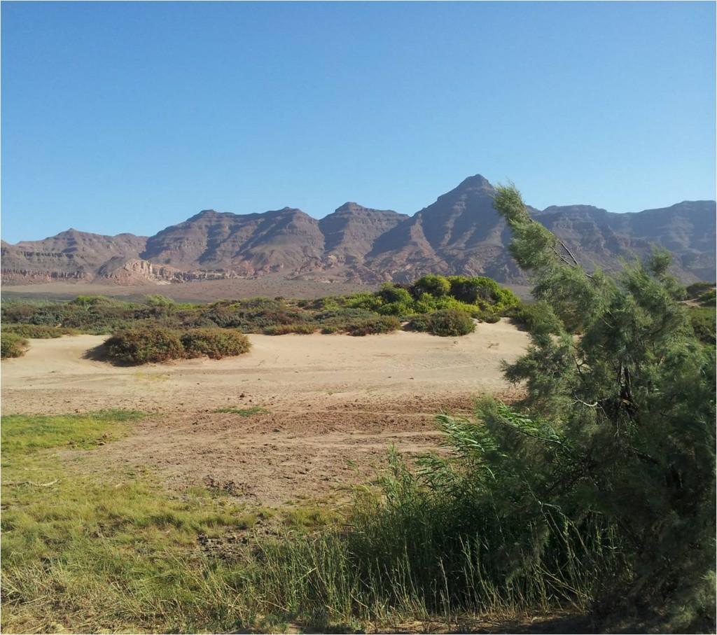 Namibie-Damaraland-paysage2