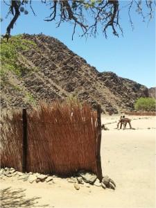 Namibie-Damaraland-savetherhino