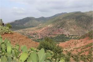 Maroc-Amanar-tyroliennes
