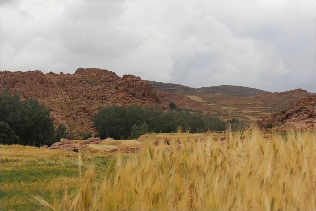 Maroc-Berbère-paysage2