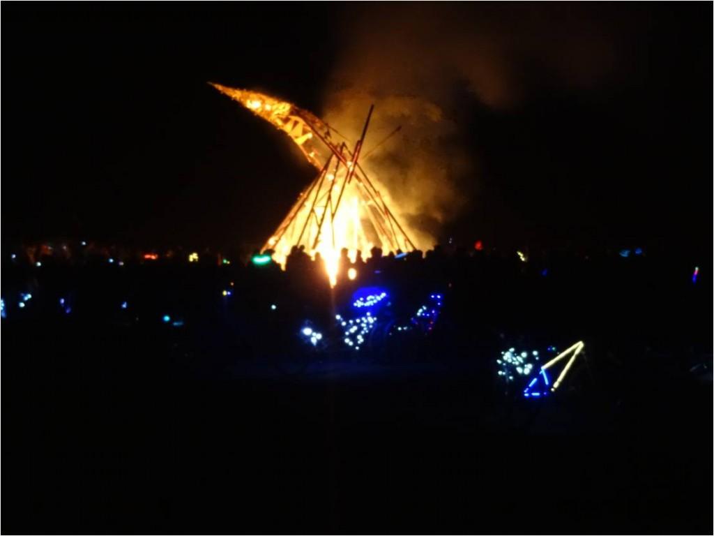 AFS-Afrikaburn-burn3