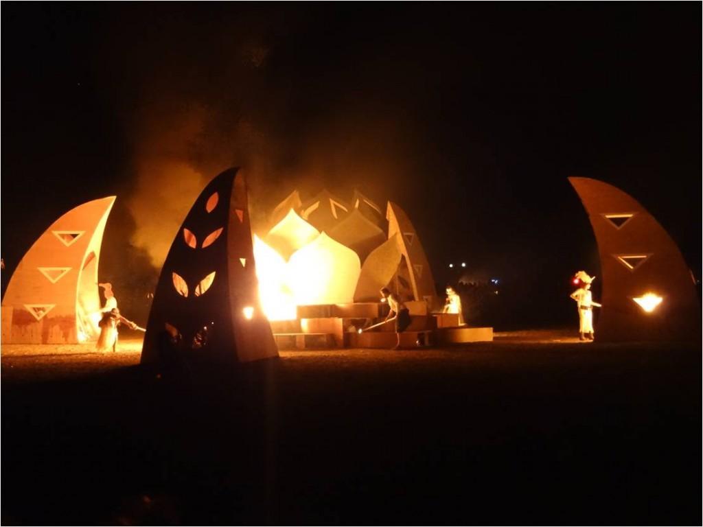 AFS-Afrikaburn-burn4