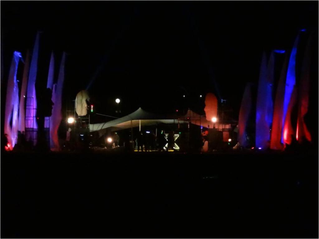AFS-Afrikaburn-nuit4