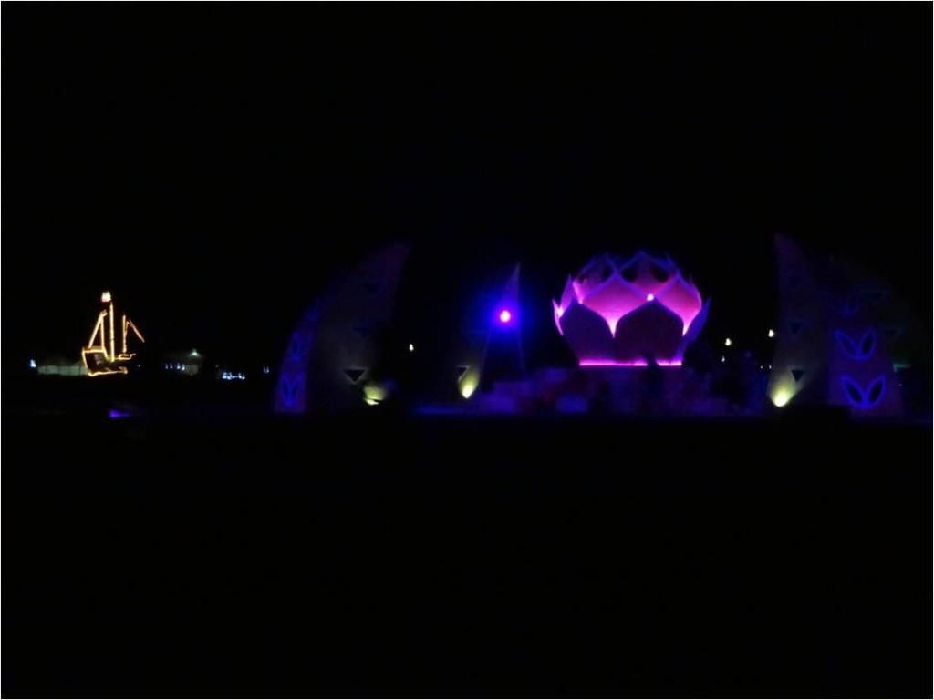 AFS-Afrikaburn-nuit5